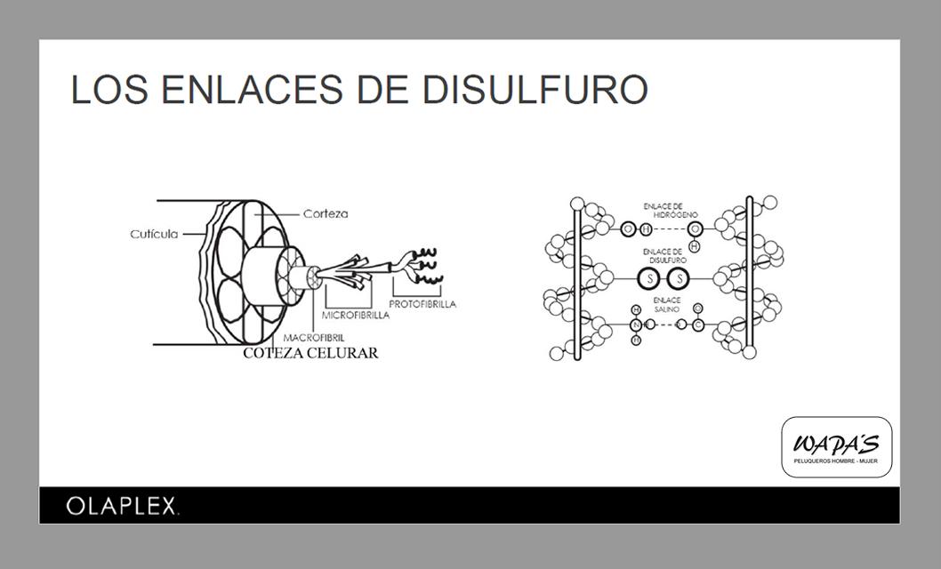 enlaces de disulfuro